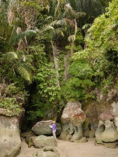 Telok Delima trail, Bako