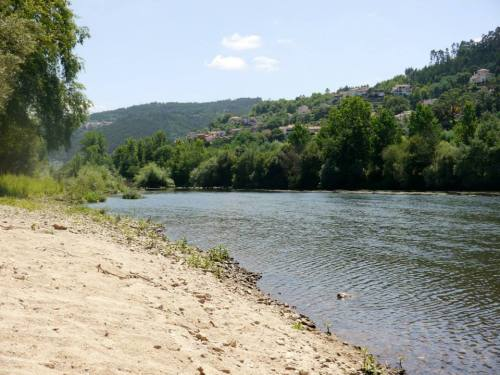 Mondego River, Portugal